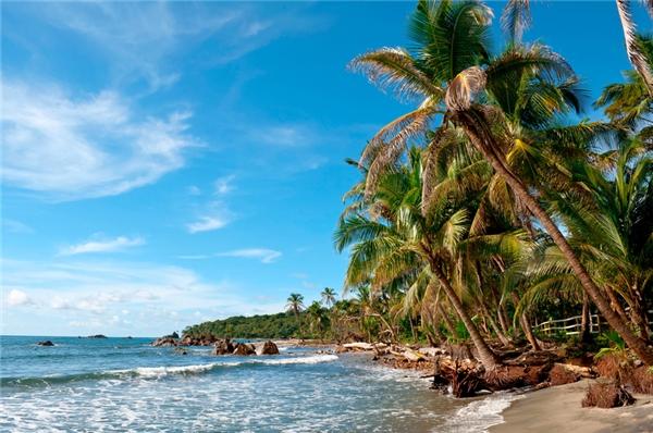 #16 Panama(Ảnh: Internet)