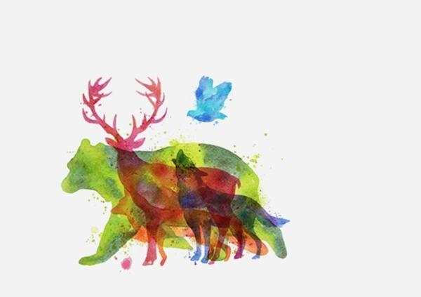 Bạn nhìn thấy con vật nào đầu tiên? (Ảnh: Internet)