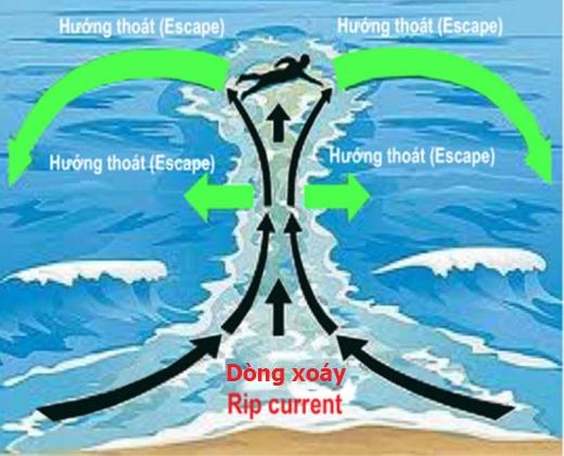 Khi bị cuốn vào dòng xoáy, bạn hãy bơi song song với bờ hoặc chờ cho dòng xoáy yếu đi rồi tìm cách thoát ra. (Ảnh: Internet)