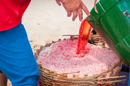 Ruốc sau khi lên bờ sẽ được tưới một loại hóa chất màu đỏ tươi. (Ảnh: My Lê)
