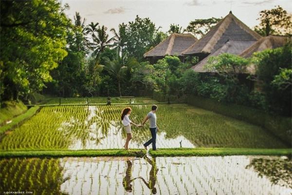 10. Ubud, Indonesia: Thuộc vùng Bali nổi tiếng của Indonesia, Ubud là điểm nghỉ dưỡng hoàn hảo, với những khu rừng mưa, ruộng bậc thang, các ngôi đền Hindu cổ kính. Du khách sẽ có một kỳ nghỉ thư giãn, đắm mình trong không gian thuần khiết của thiên nhiên, cũng như trải nghiệm nền văn hóa độc đáo của người dân địa phương. Ảnh: Ilookandsee.
