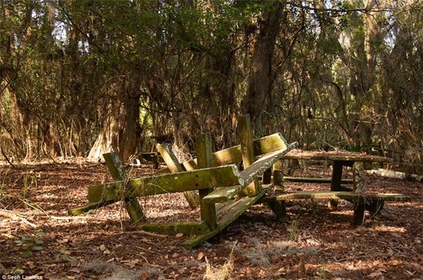 Trong ảnh là bàn picnic gỗ đã mốc meo, 15 năm không có ai chạm vào.