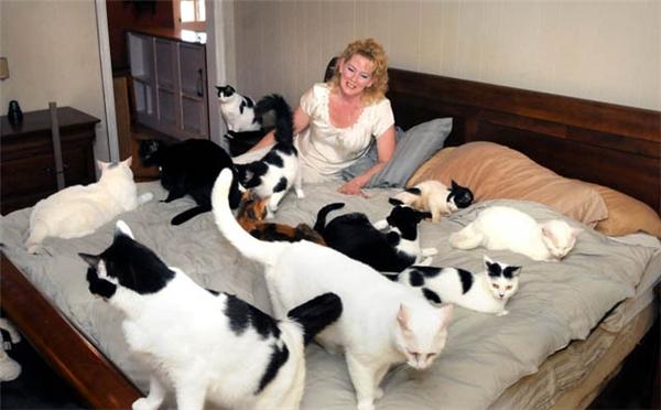 Người vợ thà ngủ với mèo còn hơn với chồng. (Ảnh minh họa: Internet)
