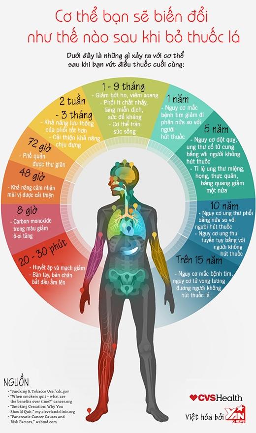 Đọc xong bài này, bạn sẽ có quyết tâm bỏ thuốc lá ngay