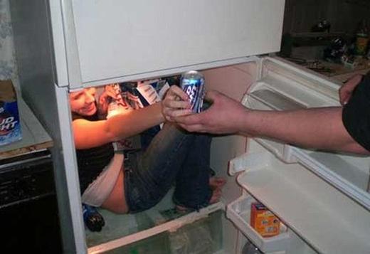 Em là nhân viên phục vụ... tủ lạnh.