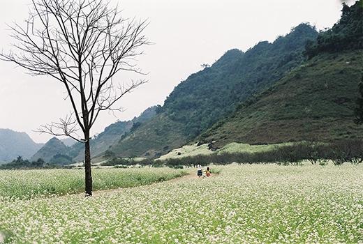 Ngỡ ngàng trước những cảnh sắc tuyệt đẹp dọc miền đất nước