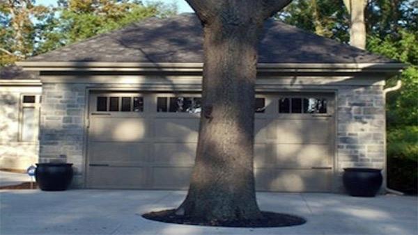 8. Tại cây hay tại nhà?