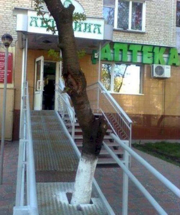 20. Chắc nhà thiết kế muốn gửi thông điệp 'không chặt phá cây xanh'.