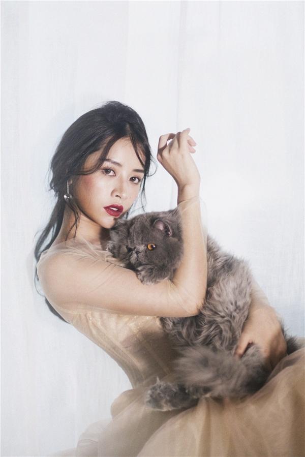 Ngoài mục đích kỉ niệm cùng hai chú mèo cưng, bộ ảnh này tiếp tục đánh dấu sự trưởng thành của nữ diễn viên. - Tin sao Viet - Tin tuc sao Viet - Scandal sao Viet - Tin tuc cua Sao - Tin cua Sao