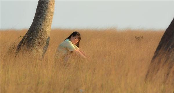 Không ngờ đồng cỏ siêu thơ mộng này lại ở một nơi rất quen thuộc