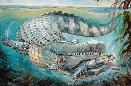 Cá sấuPurassaurus còn ăn rùa biển và nhiều động vật khác nữa.(Ảnh: Internet)
