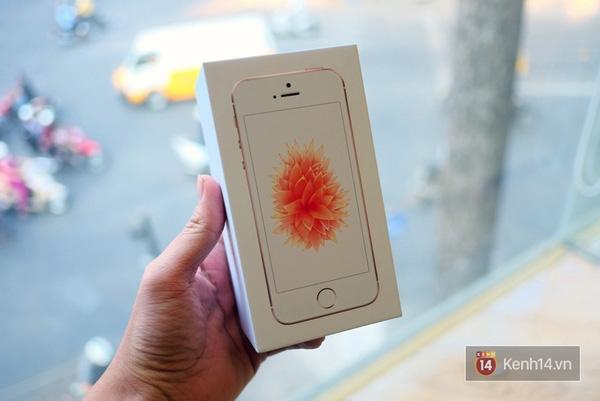 Vỏ hộp giống thế hệ iPhone 6s, nhưng hình nền hoa lá thay vì con cá. (Ảnh: Internet)