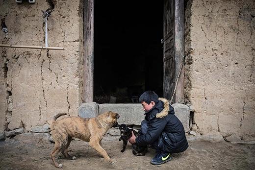 """Bầu bạn với Đông chỉ có một chú chó tên """"Gâu"""" và một chú mèo tên """"Meo"""", cũng được Đông xem như thành viên trong gia đình. (Ảnh: Internet)"""