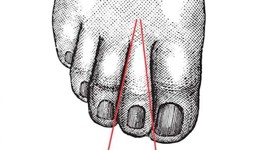 Từ gốc lên đến đầu ngón chân có thể tạo ra hình tam giác. (Ảnh: Internet)