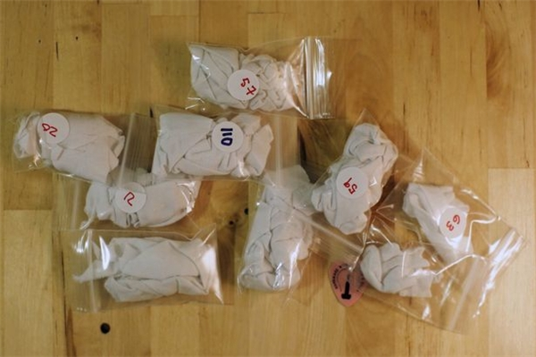 Những mảnh vải chứa mùi của các đối tượng hẹn hò tiềm năng sẽ được để vào túi có đánh số như thế này. (Ảnh: Internet)