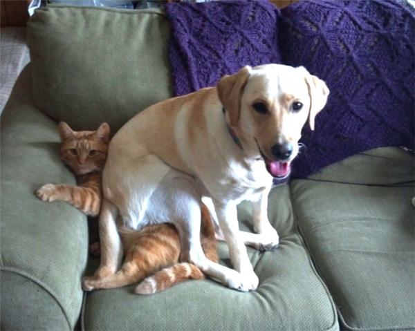 Ehehe, ghế này êm!