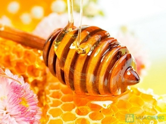 0,5 lít mật ong: Mật ong nguyên chất, đặc biệt là mật ong rừng.(Ảnh: Internet)
