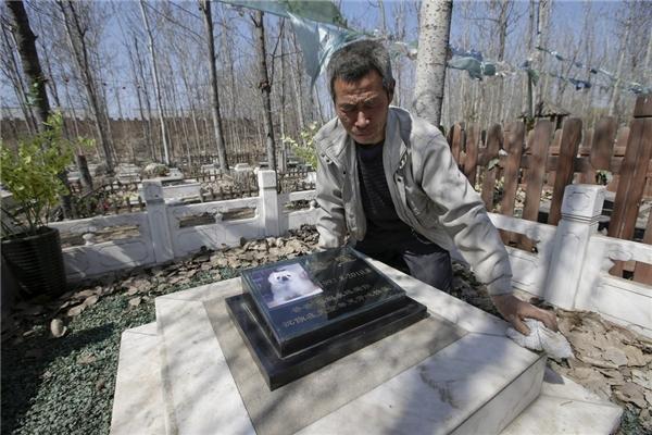 Năm nay, Tết Thanh minh rơi vào ngày 04/04 (tức 27 tháng 2 Âm lịch). Từ trước đó 2 tuần, nhiều người đã đến Nghĩa trang Vật nuôi Baifu, thuộc ngoại thành Bắc Kinh, để quét dọn mộ cho các chú cún cưng lâu ngày bám bụi.