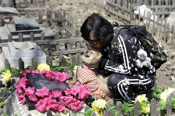 """Cô Qingqiu đang đến thăm mộ của chú chó Huoban (có nghĩa """"bạn"""") cùng Huoban Jr., người bạn mới của mình."""