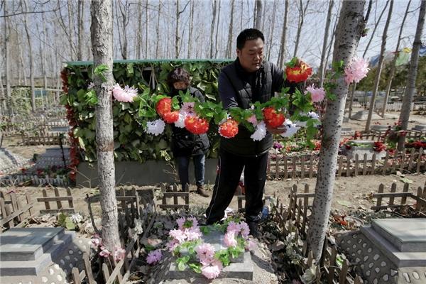 Người chủ này cẩn thận sửa sang lại vòng hoa trang trí bên trên mộ chú chó Li Naonao.