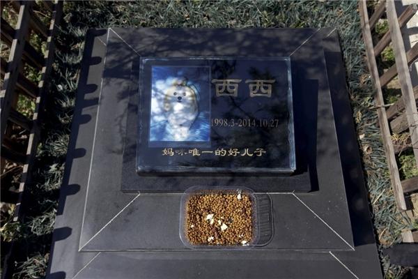 Ngày càng có nhiều những nghĩa địa như thế này mọc lên khắp Trung Quốc, đặc biệt ở các thành phố lớn như Bắc Kinh, Thượng Hải và Thành Đô.