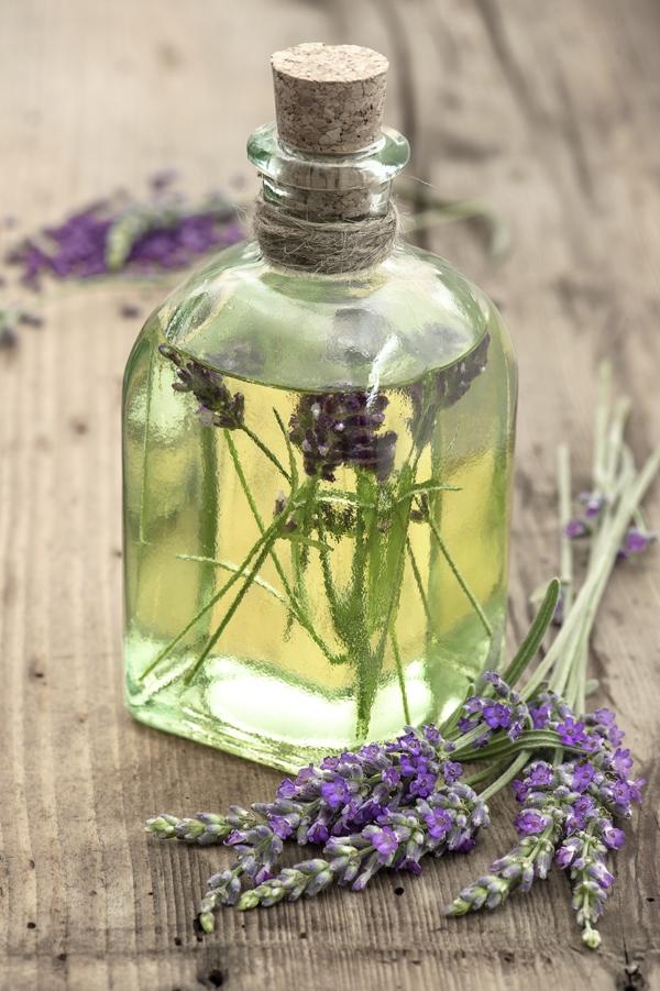 Một số tinh dầu có thể đuổi được muỗi: bạc hà, xả, oải hương, tràm trà. Dùng chúng để làm thuốc xịt đuổi muỗi.