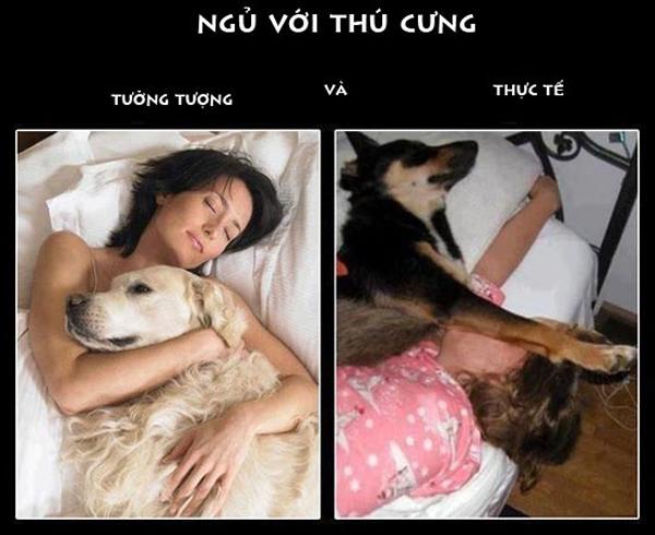 Chú chó và chủ không khác nhau mấy. (Ảnh: Internet)