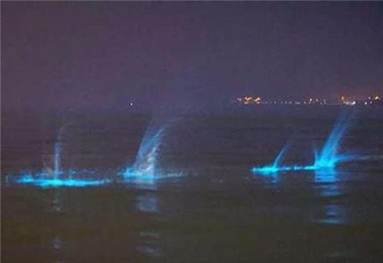 Xôn xao ánh sáng xanh ma quái xuất hiện trên bờ biển Trung Quốc