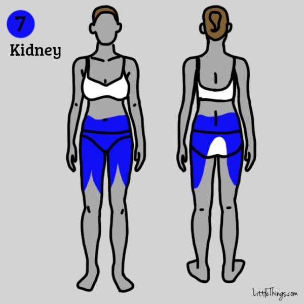 Thận không khỏe sẽ gây ra cơn đau lan rộng cả một vùng lưng dưới, bụng dưới, khung xương chậu và đùi trên. (Ảnh: Maya Borenstein)