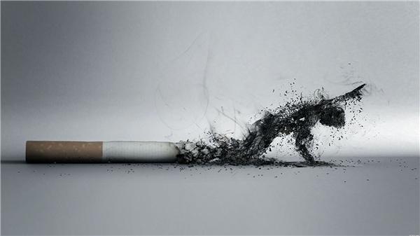 Hút thuốc lá sau ăn cực kì có hại cho sức khỏe. (Ảnh: Internet)