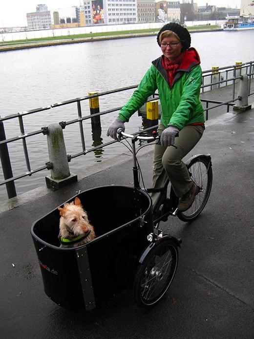 Cô chủ này đã mua hẳn một chiếc xe đạp chuyên dùng để chở thú cưng đi chơi cho chú chó ngoan ngoãn của mình. (Ảnh: Internet)