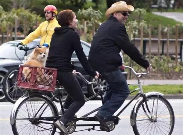 Cặp đôi hạnh phúc đi xe đạp đôi chở cún cưng dạo phố. (Ảnh: Internet)