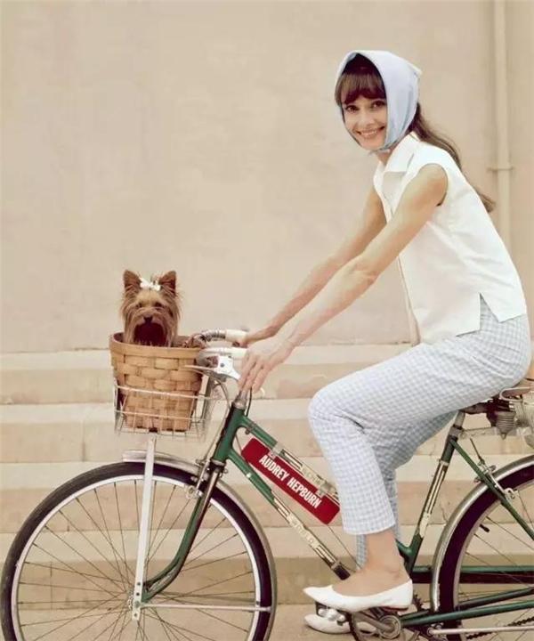 Nhưng chốt lại thì Audrey Hepburn chở cún cưng đi dạo vẫn là đáng yêu nhất, đẹp nhất. (Ảnh: Internet)
