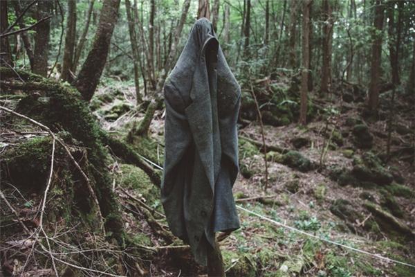 Khung cảnh hãi hùng trong khu rừng tự sát nổi tiếng Aokigahara.