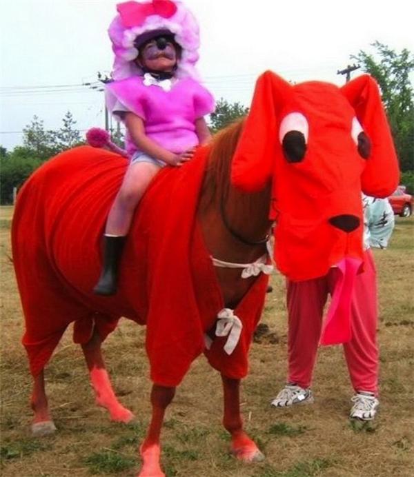 Tôi là cún chứ không phải ngựa đâu nhé.
