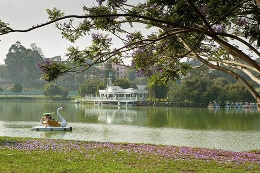 Một góc hồ Xuân Hương giữa mùa hoa phượng. (Ảnh: Internet)