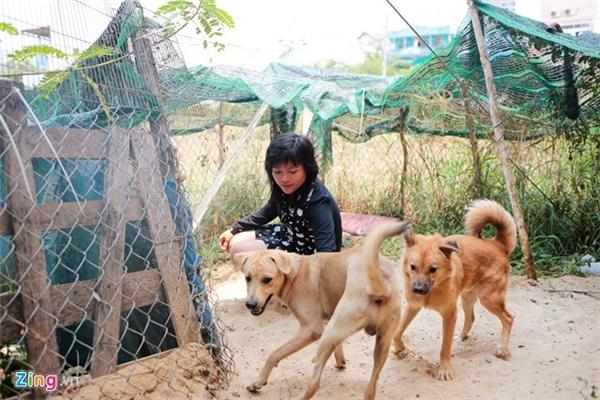 Như còn mượn thêm một bãi đất nhỏ cạnh nhà để làm nơi vệ sinh cho thú cưng. Việc chăm sóc này mất khá nhiều công sức và thời gian.