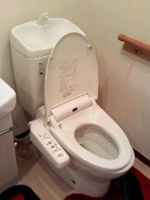 Toilet Yoshiki cũng có thiết kế kiểu dáng tương đồng với các loại toilet hiện đại.(Ảnh: Internet)