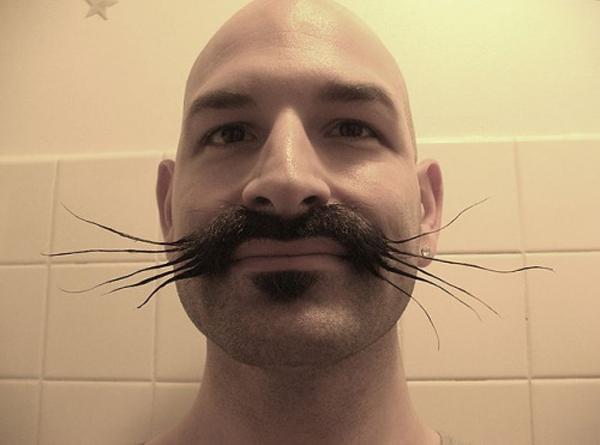 16. Bộ râu con chuột nhắt này chắc hản sẽ khiến chị em cười không ra hơi.