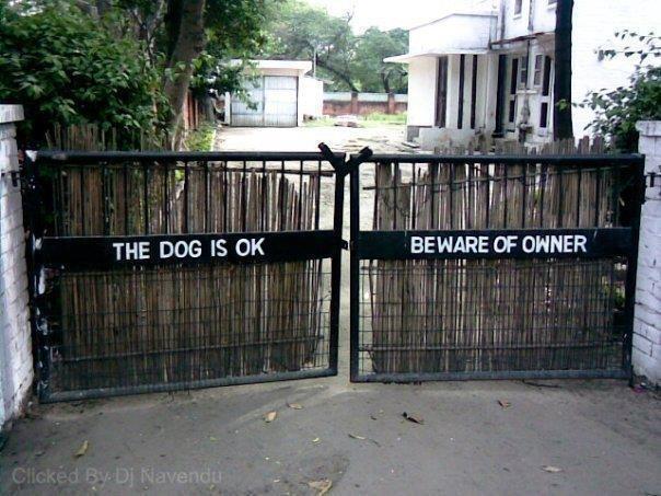 Chó không cắn. Coi chừng chủ dữ. (Ảnh: Internet)