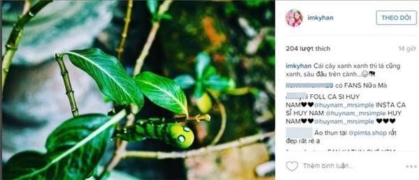 """Kỳ Hân đăng tải hình ảnh tương tự lên instagram với dòng trạng thái""""Cây xanh xanh thì lá cũng xanh, sâu đậu trên cành..."""""""