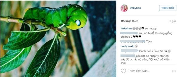 """Kỳ Hân tiếp tục đăng tải một chú sâu đang gặm lá xanh với dòng trạng thái """"so happy""""."""