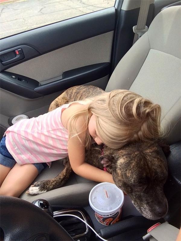 """""""Chó ơi đừng buồn, chị sẽ luôn bên cạnh em mà. Chích ngừa không hề đau đâu nhé."""" Hẳn là bố mẹ cô bé cũng từng nói với cô câu tương tự. (Ảnh: Internet)"""