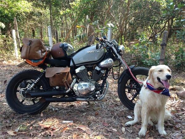 Chuyến du lịch của chú cún và chủ chứng minh: Bạn gái không có, nhưng chó nhất định phải có một con!