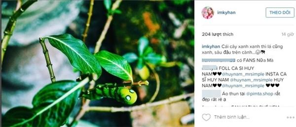 """Kỳ Hânđăng tải hình ảnh tương tự lên instagram với dòng trạng thái""""Cây xanh xanh thì lá cũng xanh, sâu đậu trên cành..."""""""
