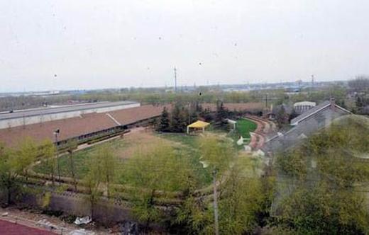 Căn biệt thự của gia đình Lưu Diệc Phi rộng gấp 4 lần một sân bóng mini.