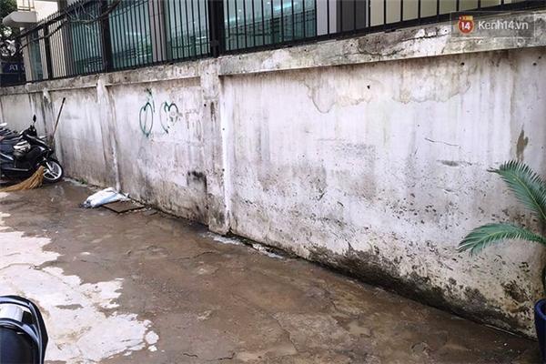 Bức tường trải qua thời gian đã bị ẩm mốc, loang lổ những vết đinh và nét vẽ bậy, gây mất mỹ quan đô thị. Vì vậy các bạn trẻ thuộc đoàn phường Bến Thành và câu lạc bộ mỹ thuật Ếch con đã chung tay cải tạo những bức tường cũ kỹ này.
