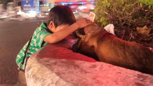 Rơi nước mắt với cậu bé bán vé số bầu bạn bên chú chó tật nguyền