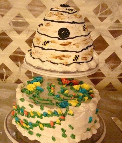 Phải chăng thợ làm bánh đã làm nửa dưới, còn nửa trên để bé nhà mình tự tay sáng tạo?