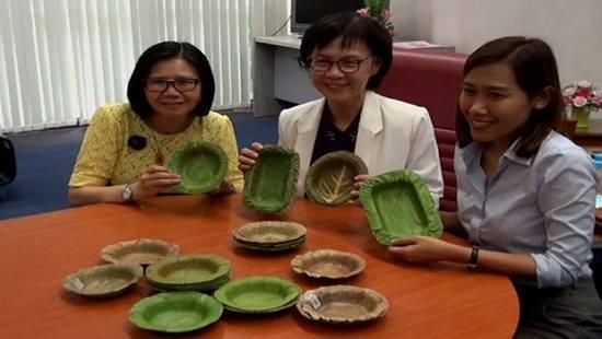 Bát làm bằng lá cây soán ngôi ngoạn mục hộp xốp đựng thức ăn